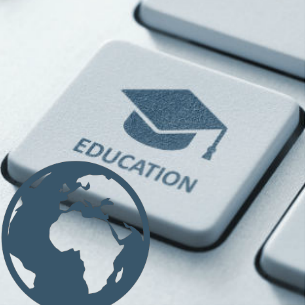 Promote the integration of online educational opportunities in Africa